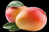 Mango PNG Free Download 9
