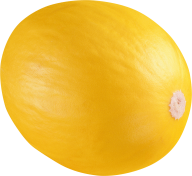 Melon PNG Free Download 1
