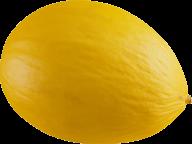 Melon PNG Free Download 2