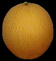 Melon PNG Free Download 20