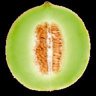 Melon PNG Free Download 22