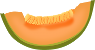 Melon PNG Free Download 24