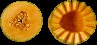 Melon PNG Free Download 27