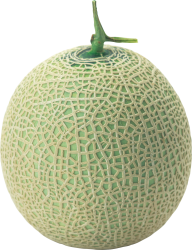 Melon PNG Free Download 28