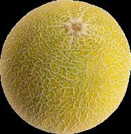 Melon PNG Free Download 29
