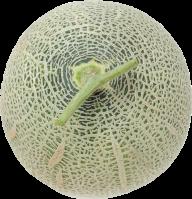 Melon PNG Free Download 3