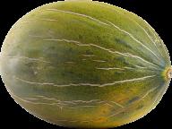 Melon PNG Free Download 30
