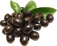 Olives PNG Free Download 1
