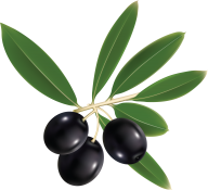 Olives PNG Free Download 13