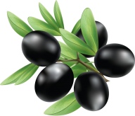 Olives PNG Free Download 15