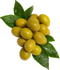 Olives PNG Free Download 2