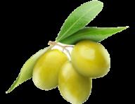Olives PNG Free Download 23