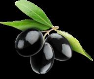 Olives PNG Free Download 30
