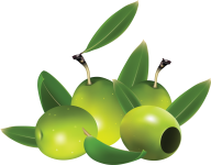 Olives PNG Free Download 6