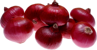 Onion PNG Free Download 15