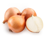 Onion PNG Free Download 17