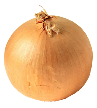Onion PNG Free Download 18