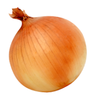 Onion PNG Free Download 21