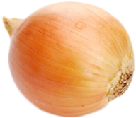 Onion PNG Free Download 25