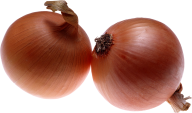 Onion PNG Free Download 7