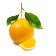 Orange PNG Free Download 1