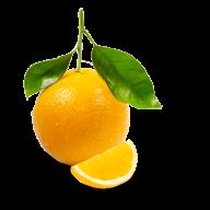 Orange PNG Free Download 1