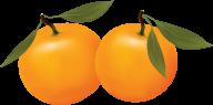 Orange PNG Free Download 11
