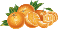 Orange PNG Free Download 12