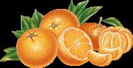 Orange PNG Free Download 12