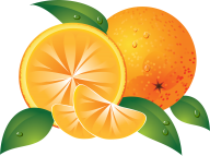 Orange PNG Free Download 13