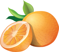 Orange PNG Free Download 14