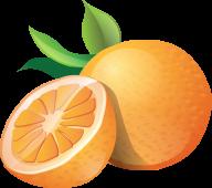 Orange PNG Free Download 14