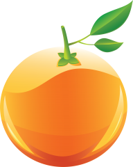 Orange PNG Free Download 15