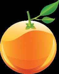 Orange PNG Free Download 15