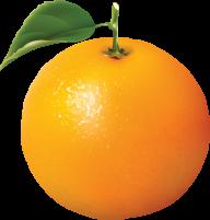 Orange PNG Free Download 16