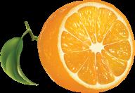 Orange PNG Free Download 17