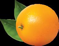 Orange PNG Free Download 20