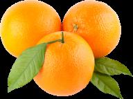 Orange PNG Free Download 23