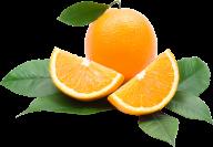 Orange PNG Free Download 24