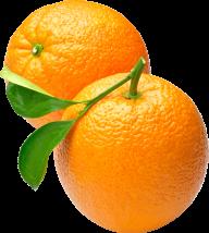 Orange PNG Free Download 25