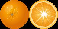 Orange PNG Free Download 27