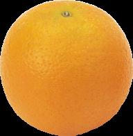 Orange PNG Free Download 30