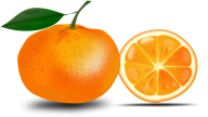 Orange PNG Free Download 6