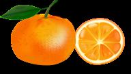 Orange PNG Free Download 6