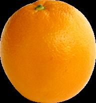 Orange PNG Free Download 8