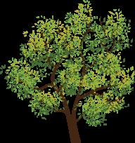 Painting of Tree
