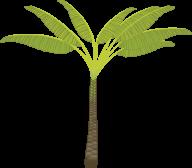 PalmTree PNG Free Download 6