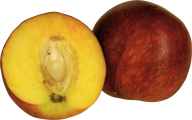 Peach PNG Free Download 11