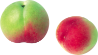Peach PNG Free Download 17