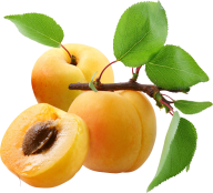 Peach PNG Free Download 2